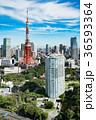 東京タワー 都市風景 都会の写真 36593364