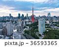 東京タワー 都市風景 都会の写真 36593365
