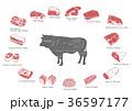 イラスト イラストレーション 動物のイラスト 36597177