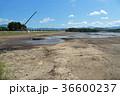 湖の水を抜く風景 36600237