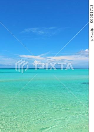 沖縄 青空とエメラルドグリーンの海 36601713