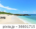 沖縄 宮古島の青空と海 36601715