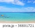 沖縄 青空と綺麗な青い海 36601721