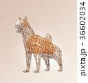 犬 干支 ローポリのイラスト 36602034