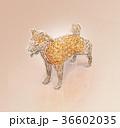犬 干支 ローポリのイラスト 36602035