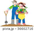 家庭菜園の収穫 36602716