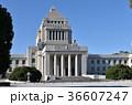 国会議事堂 36607247