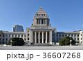 国会議事堂正面 36607268