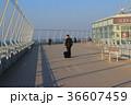 centrair Nagoya International Airport, Nagoya 36607459