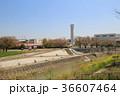 Train view of Osaka to Nara , Japan 36607464