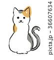 三毛猫 (首輪なし) 手描きイラスト 36607634