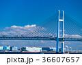 横浜 ベイブリッジ 風景の写真 36607657