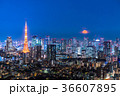 月光りの東京夜景 36607895
