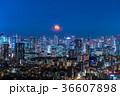 都市風景 東京 夜景の写真 36607898
