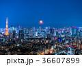 月光りの東京夜景 36607899