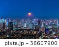 月光りの東京夜景 36607900
