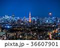 月光りの東京夜景 36607901