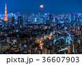 月光りの東京夜景 36607903