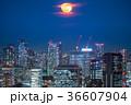 都市風景 東京 夜景の写真 36607904