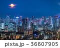 月光りの東京夜景 36607905