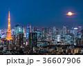 月光りの東京夜景 36607906