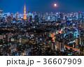 月光りの東京夜景 36607909