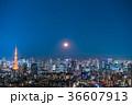 月光りの東京夜景 36607913