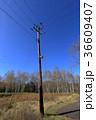 北海道 電信柱 36609407