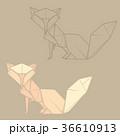 おりがみ 折り紙 折紙のイラスト 36610913