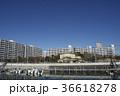 浦安市 新浦安 街並みの写真 36618278