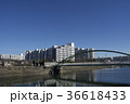 浦安市 新浦安 街並みの写真 36618433