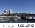 浦安市 新浦安 境川の写真 36618542