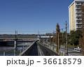 浦安市 新浦安 街並みの写真 36618579