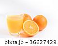 ネーブルオレンジとオレンジジュース 36627429