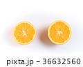 ネーブルオレンジ 36632560