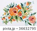 水彩薔薇抽象的バラオレンジ色ローズお花 36632795