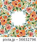 水彩薔薇スクエアフレームお花オレンジ色ローズ 36632796