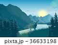 鹿 鳥 動物のイラスト 36633198