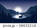 しか シカ 鹿のイラスト 36633218