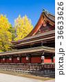 北野天満宮 銀杏 神社の写真 36633626