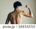 筋肉 若い日本人男性 上腕二頭筋 広背筋 36634550