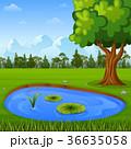 景色 風景 自然のイラスト 36635058