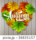 あき 秋 葉のイラスト 36635157