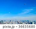 東京上空の飛行船 36635680