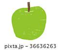 りんご 水彩画 36636263