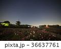 法起寺 夜 夜景の写真 36637761