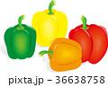 パプリカ カラフル 食材のイラスト 36638758