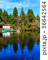 白雲の池 池 秋の写真 36642564