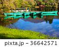 白雲の池 池 秋の写真 36642571