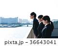 男性 女性 就活の写真 36643041